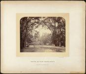 Bilder aus dem Thiergarten